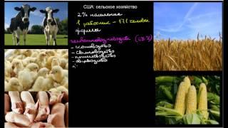 487  США сельское хозяйство(, 2014-11-04T23:31:20.000Z)