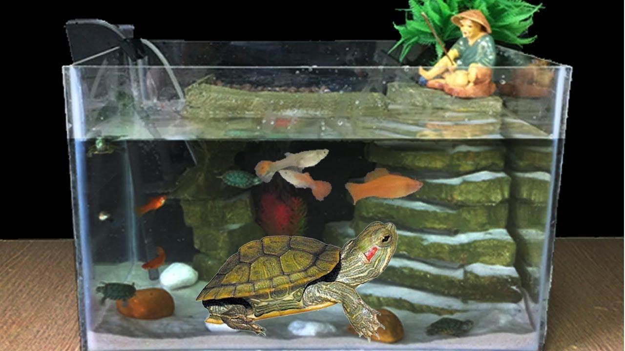 Diy Aquarium Fish Guppy Turtle With
