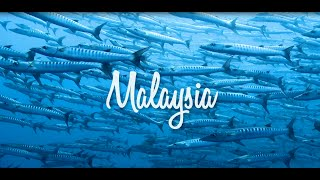 Video #FlyWithAirAsia to Malaysia download MP3, 3GP, MP4, WEBM, AVI, FLV Juli 2018