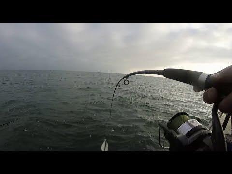 Палка колесом! Каждый заброс. Лов Трески в Балтийском море.