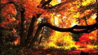Partita No. 2 In D Minor, BWV 1004: I. Allemanda - Itzhak Perlman