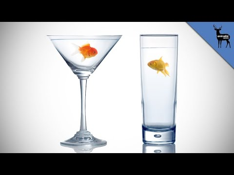 How Do Fish Drink Water?