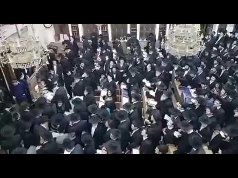 תפילות הערב לרפואת מרן הרב שטיינמן שליט''א בבית הכנסת לדרמן