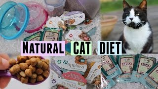Healthy Cat Diet | July 2014