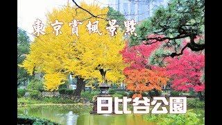 【關東賞楓】東京賞楓景點~日比谷公園(日比谷公園/ひびやこうえん)