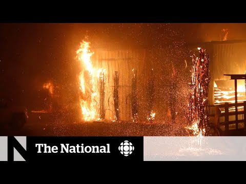 Getty Fire Was 'Act Of God' Caused By Tree Branch Hitting Power ...