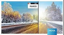 HOYA Polarized - Häikäisemättä parhaat aurinkolasit autoiluun