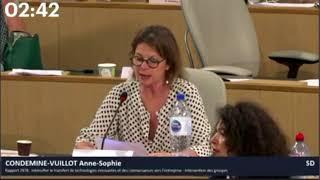 Intensifier le transfert de technologies innovantes - Anne-Sophie Condemine