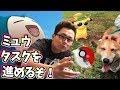 ポケモンGO!ミュウタスクを進め遠出する!【Pokemon GO】【VLOG】【犬可愛いわ】
