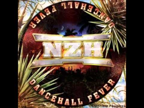 NZH; Connexions feat  Tony Mandell