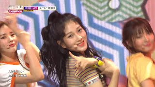 Show Champion EP.273 fromis_9 - DKDK - Stafaband