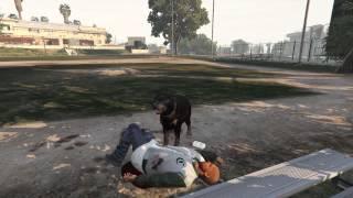 GTA V Serbest Mod - Köpek Olmak - Bölüm 10