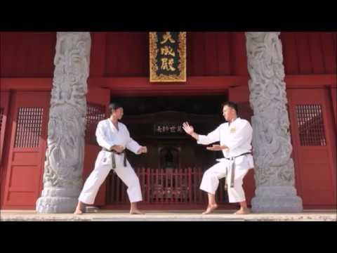 Seeking the origins osf Karate - Naka Tatsuya Sensei