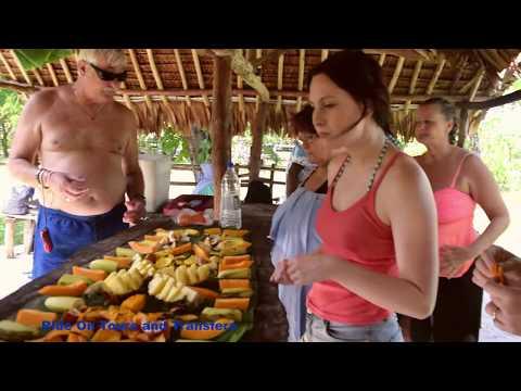 Ride-On Tours and Transfers (Vanuatu)