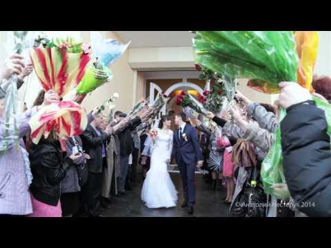 Свадебная фотосъемка в Москве, фотограф на свадьбу - СВ-Сервис