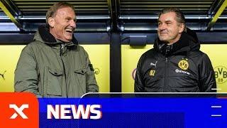 Transfer-News: Halt Stopp! BVB verbietet Bayern-Transfers und Thomas Tuchel will Julian Weigl   SPOX