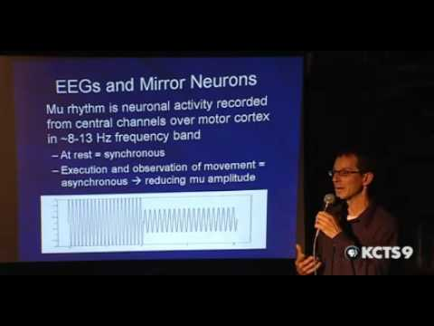 How Does Autism Affect the Brain? Part 1 of 2 | SCIENCE CAFE