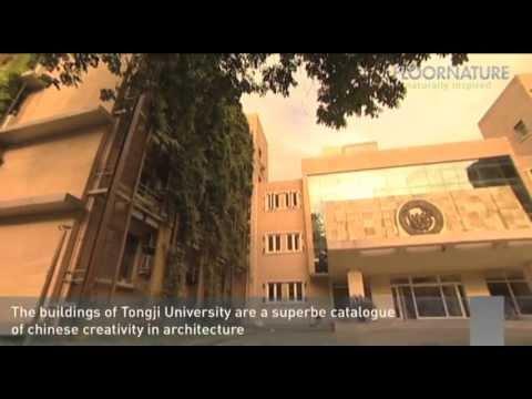 Tongji University Architecture, Shanghai