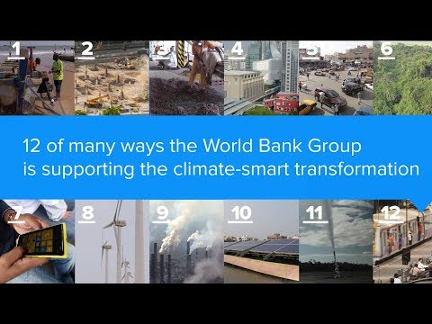 12 Ways the World Bank Group is Supporting a Climate-Smart Transformation