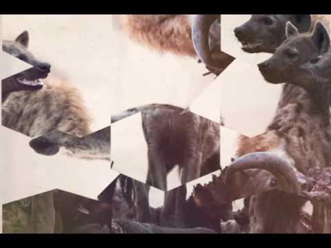 Hyenah - The Wish (Manoo Darkside Remix)