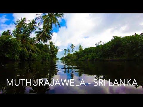 Muthurajawela, Sri Lanka - Travel Vlog