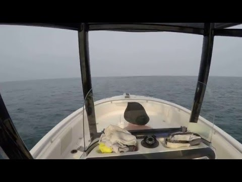 2016 Robalo R242 Running Offshore GoPro Hero 4 Silver