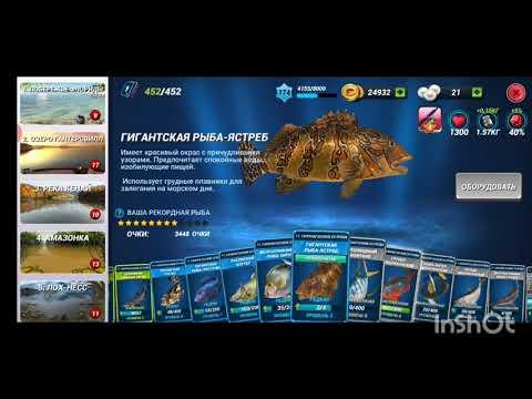 Какие есть альтернативы игре Fishing Clash? Обсуждение.