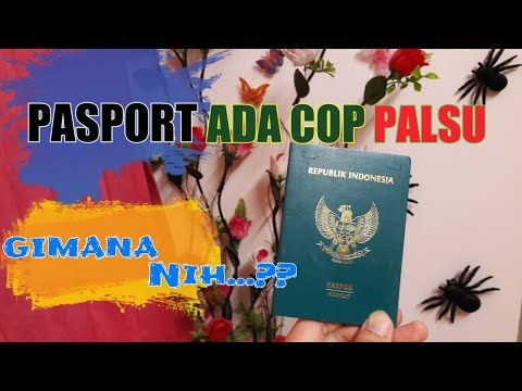 BACK FOR GOOD 2019 - PASPORT ADA COP atau PERMIT PALSU | PROGRAM PEMUTIHAN PATI