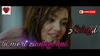 Tu Meri Zindagi Hai   Sonu Kakkar   Aashiqui ||hayat &murat || New Cover 2016 HD high quality