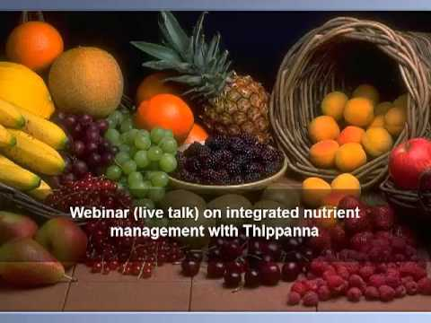 Integrated nutrient management in Horticulture Crops - Thippanna - www.agricultureinformation.com