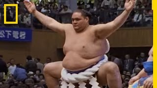 Sumo Wrestling 101 | National Geographic