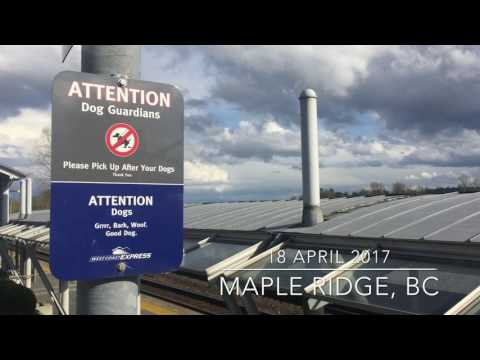 Two Commuter trains in Maple Ridge, British Columbia