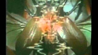 "2000 ""Medieval Demon & Bug"" MTV Latin America Commercial"