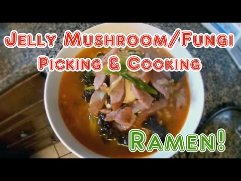 Jelly Fugus Mushroom Finding and Cooking Ramen Noodle 목이버섯