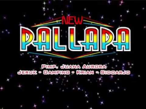 Tak Kau Hiraukan-Anisa Rahma (new pallapa)
