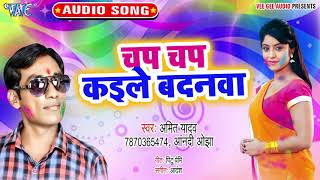 2020 का नया सबसे हिट होली गीत   Chap Chap Kaile Badanwa   Amit Yadav   Superhit Holi Geet