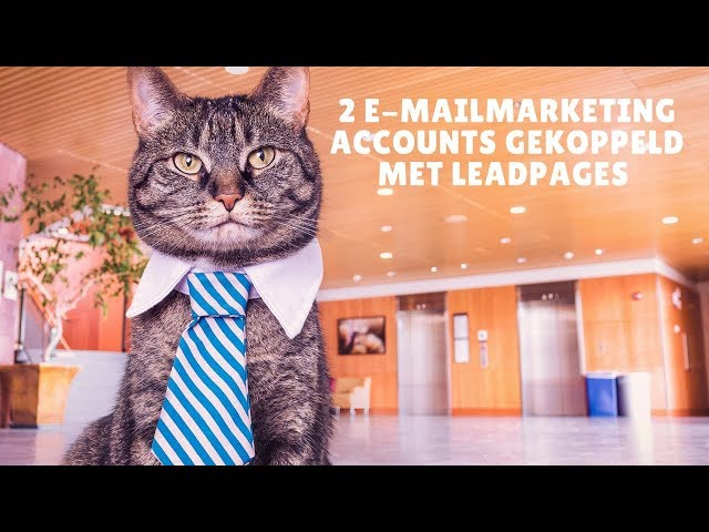 2 Verschillende Mailchimp accounts gaan linken met Leadpages