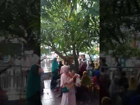 Video Klinik Khitan H. Amung