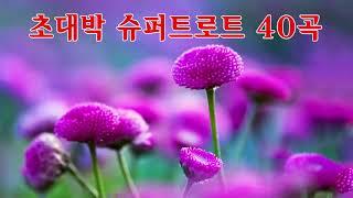 초대박 슈퍼트로트 40곡 - 애절한 트로트메들리 모음 …