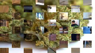 Buy Medical Marijuana in Calgary