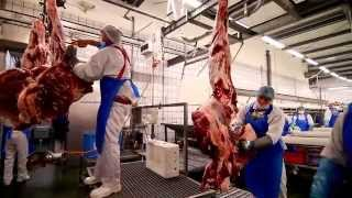 Zakłady Przemysłu Mięsnego Biernacki  - film korporacyjny