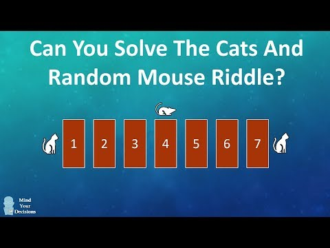 Can You Solve The Cats And Random Mouse Riddle?