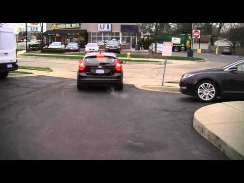 Car Rental Software From Bluebird Auto Rental Systems