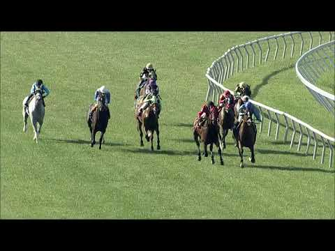 video thumbnail for MONMOUTH PARK 6-6-21 RACE 11