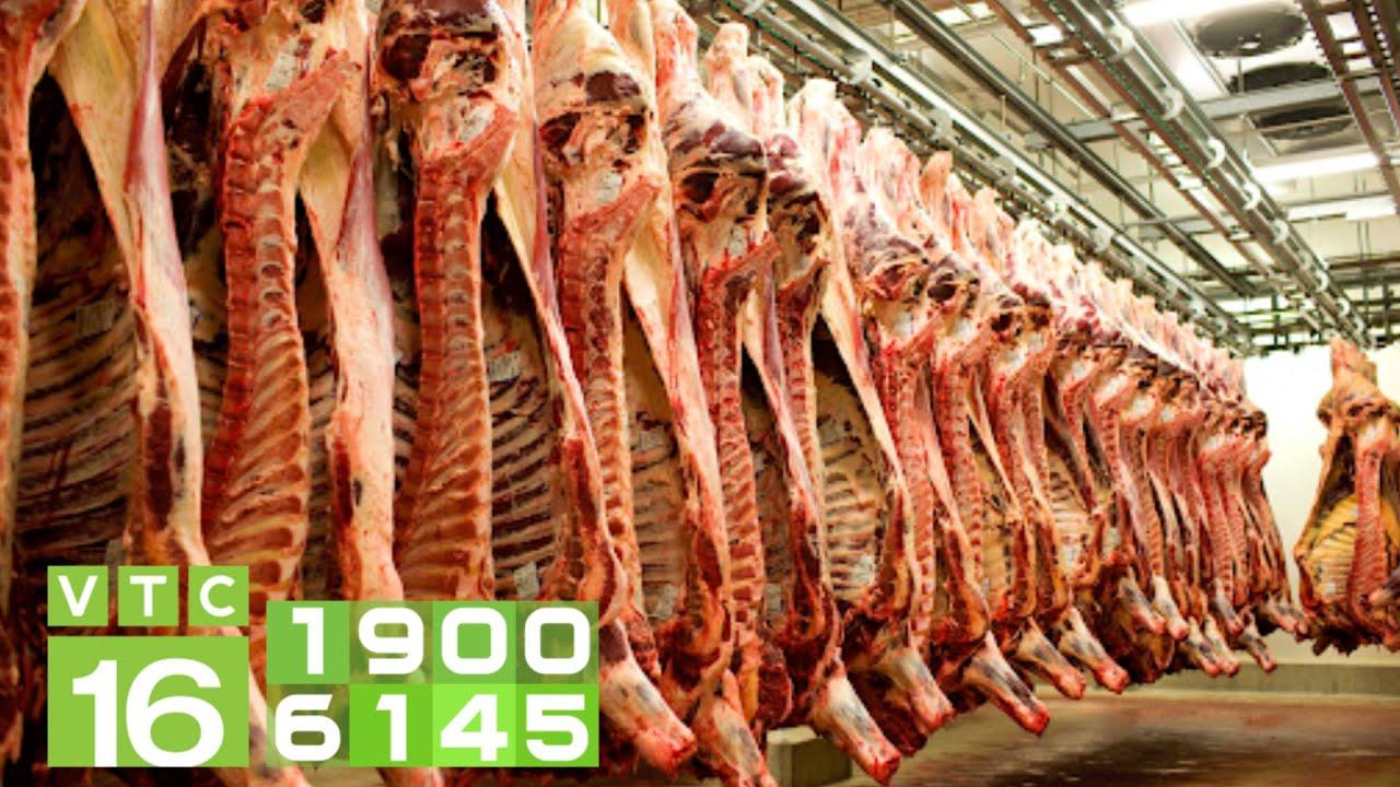 Vì sao thịt bò mát có giá 400.000 - 550.000 đồng/kg? | VTC16