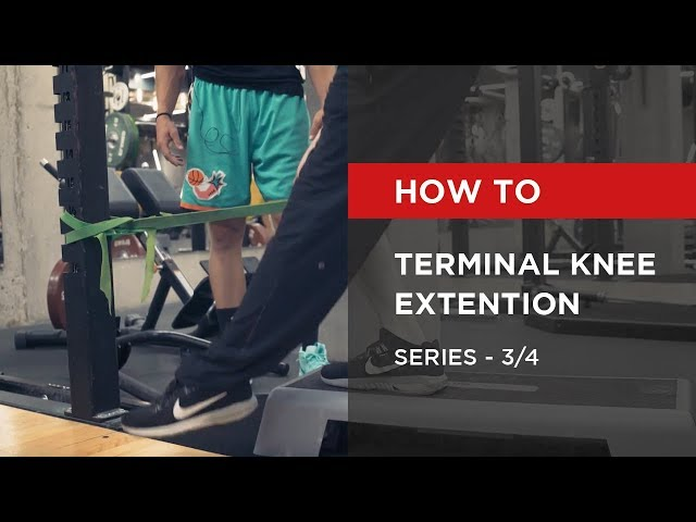 SERIES: Terminal Knee Extention [3/4]
