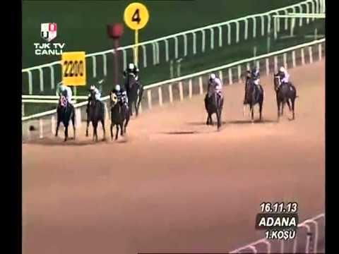 Adana Hipodromu (7. Yarış Günü) 1. Koşusu