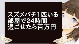 スズメバチ1匹いる部屋で24時間過ごせたら百万円 thumbnail