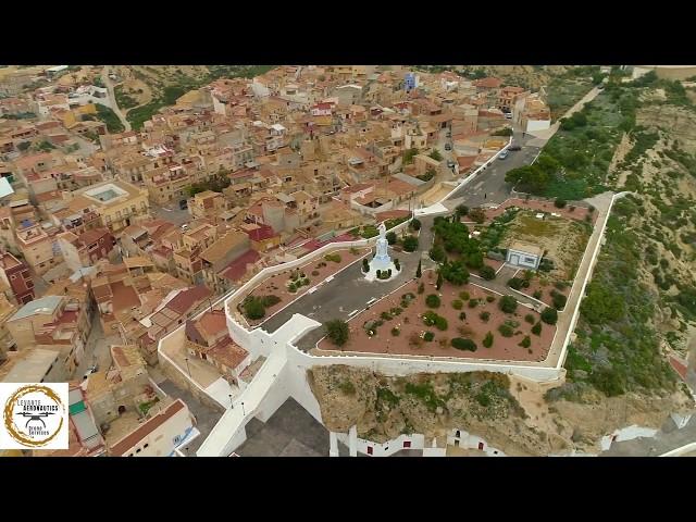 Suelta de Palomos Deportivos en Murcia | Sociedad de Colombicultura | 1080 HD