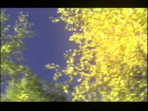 Мел. Марфа Данилова-Хатыҥ Ай, слова И.Васильева. Байылыаттык олорорго. Мое кровное. Якутская песня.